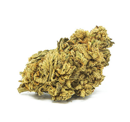 Cogollo de Marihuana CBD White Widow