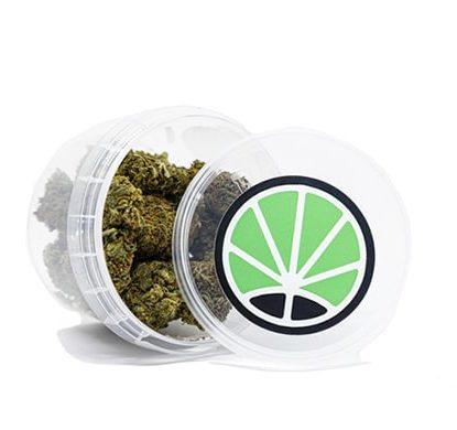 contenedor de cogollos Orange Bud Marihuana cbd online
