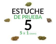 estuche-de-prueba-5-marihuana-cannabis-cbd-thc