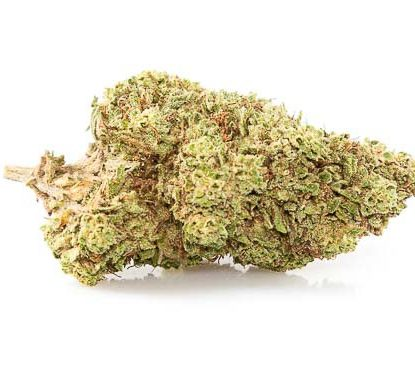 Orange Bud Marihuana CBD online