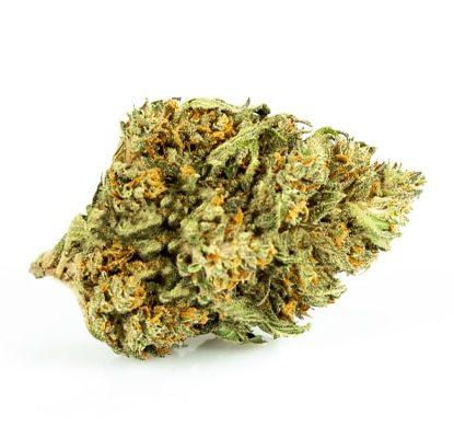 Marihuana Online CBD Sweet Berry