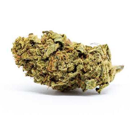Cogollo de Marihuana CBD Melon-Kush