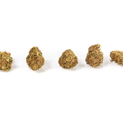 Cogollos Melon Kush Marihuana cbd