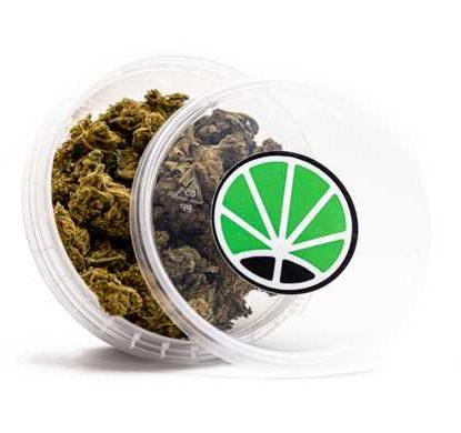contenedor de Cogollos Melon-Kush Marihuana cbd online