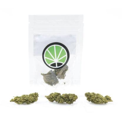 melon-kush-marihuana-canamo-cannabis