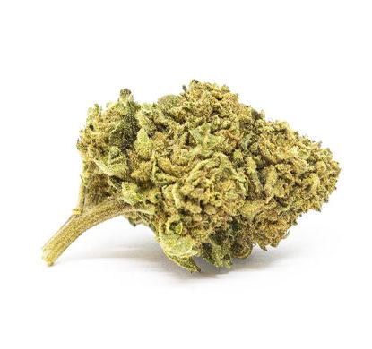 Flor de Marihuana CBD Gorilla Glue