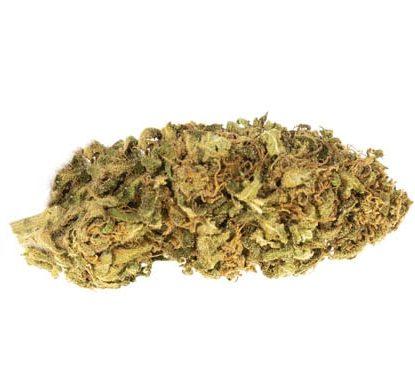 Flor de Marihuana CBD Bubblegum