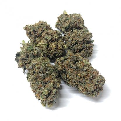 Cogollos de California Haze marihuana sin thc