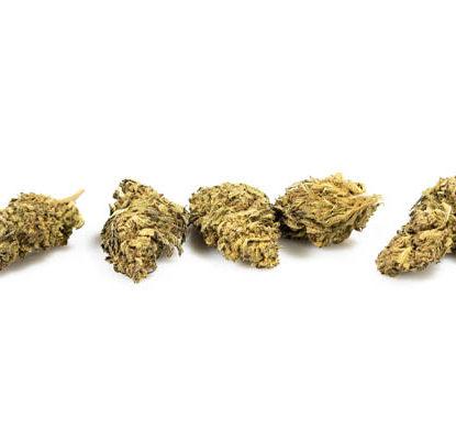 Cogollos DO-SI-DOS marihuana CBD
