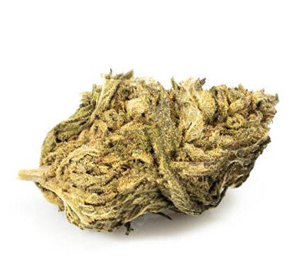 Marihuana CBD DO-SI-DOS