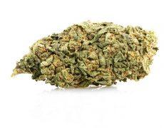 Do si Dos marihuana CBD
