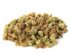 small buds mix marihuana CBD
