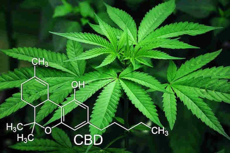 que es el tetrahidrocannabinol?