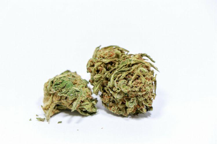 marihuana en el la lactancia