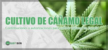 las contribuciones para lo cultivo de canamo legal
