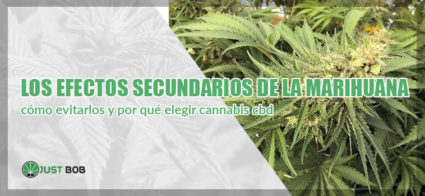 efectos secundarios de la marihuana
