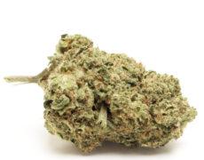 do-si-dos-cogollos-cbd-canamo-marihuana-cannabis