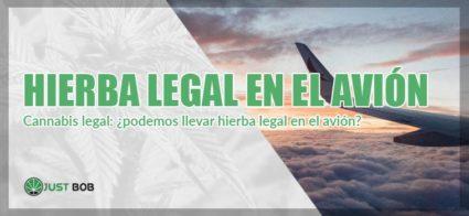 cannabis legal en el avion