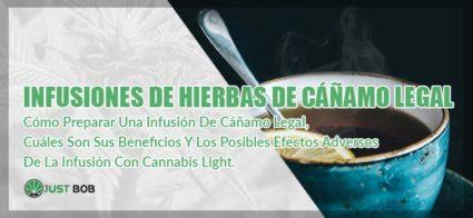 infusiones de hierbas de canamo legal