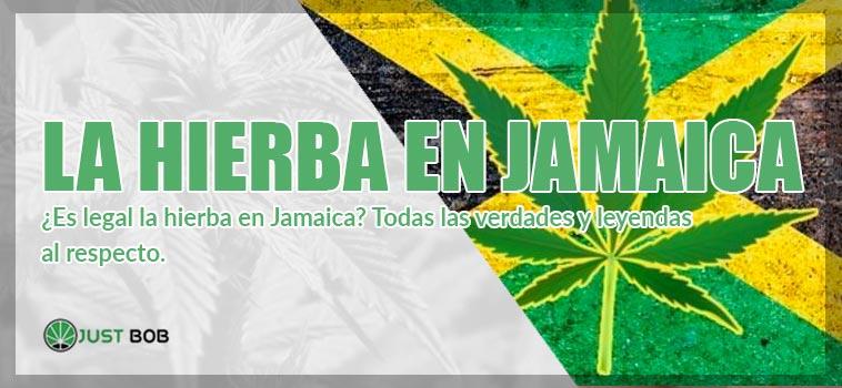 ¿Es legal la hierba en Jamaica_ Todas las verdades y leyendas al respecto_