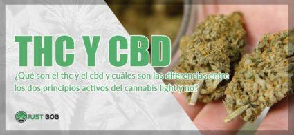 THC y CBD