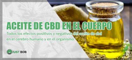 aceite cbd en cuerpo