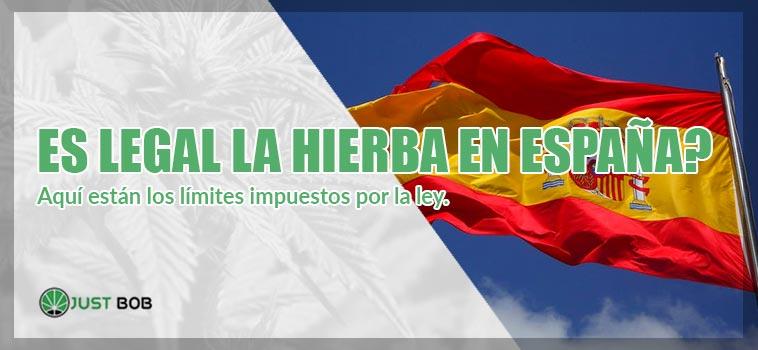 marihuana espana limite ley