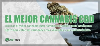 mejor cannabis cbd