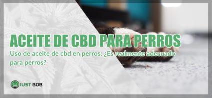 cannabis light y Aceite de CBD para perros