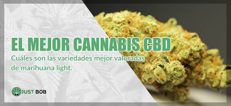mejor cannabis CBD legal