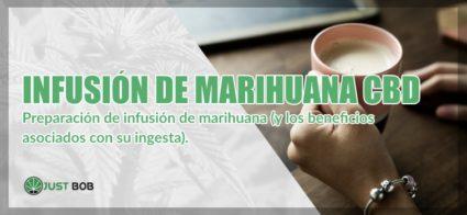 Infusión de marihuana light