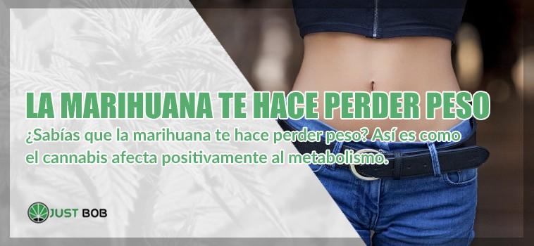 La marihuana legal te hace perder peso
