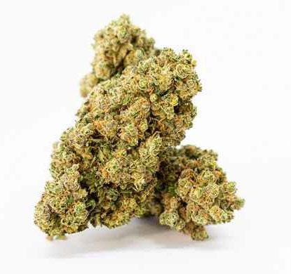 gorilla-glue-marihuana-cbd-canamo