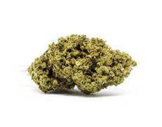 Flor de Marihuana CBD Master Kush