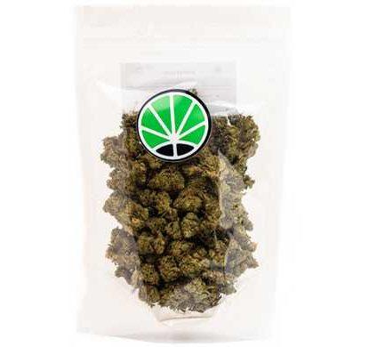 master kush cultivo de interior cannabis