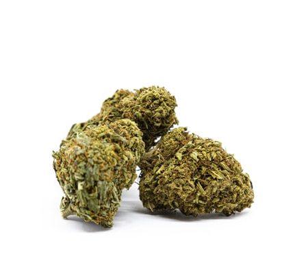 Cogollos de Orange Bud marihuana sin thc