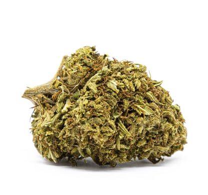 orange bud marihuana indica