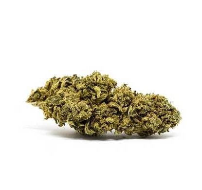 white widow canamo cbd marihuana