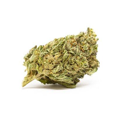 bubblegum marihuana cbd espana