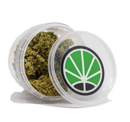 contenedor de Flores de Bubblegum para comprar Marihuana cbd online