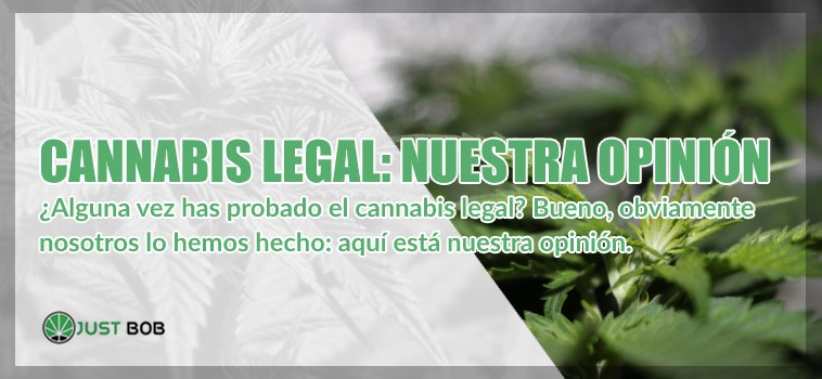 cannabis legal nuestra opinion