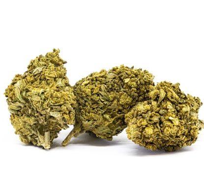 lemon cheese marihuana cannabis