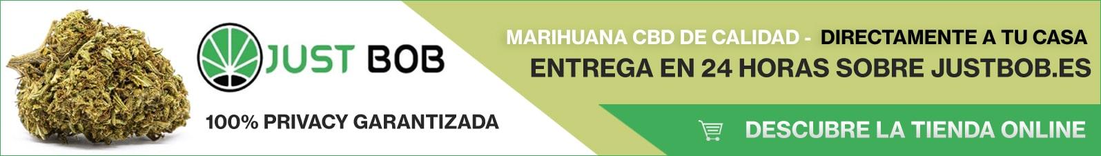Banner Justbob marihuana CBD de calidad
