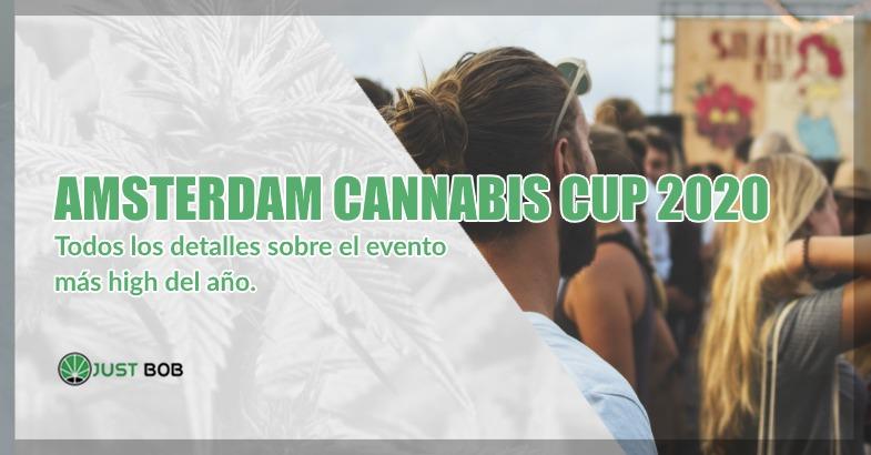 Amsterdam Cannabis Cup 2020 cogollos cbd