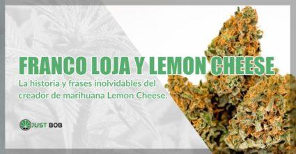 Franco Loja y marihuana cbd Lemon Cheese