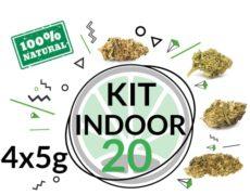 Kit de Prueba Indoor 20 gramos de Cannabis CBD por 4 variedades
