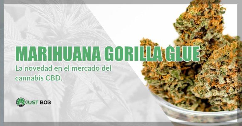 Marihuana sin thc Gorilla Glue