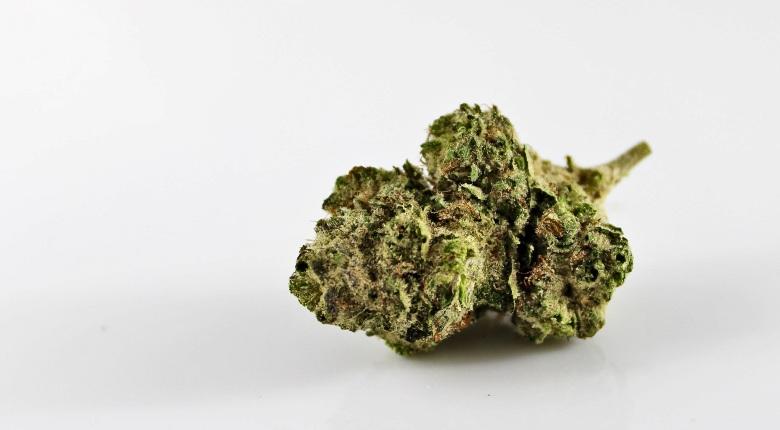cannabis cbd mango kush