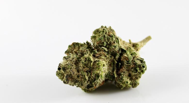 cogollos cbd de cannabis