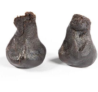 2 piezas de hachis online variedad Girl Scout Cookies